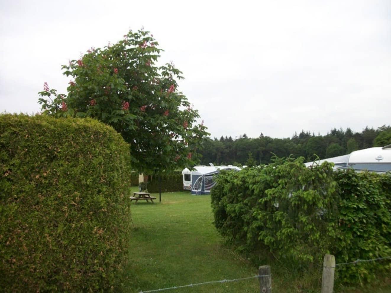 Kamperen bij de boer 13 - camping de prinsenhoeve