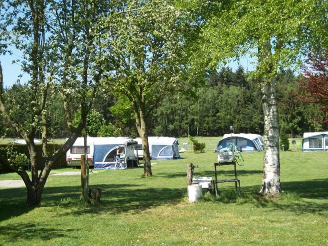 Kamperen bij de boer 29 - camping de prinsenhoeve