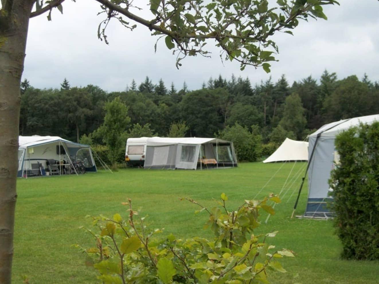 Kamperen bij de boer 30 - camping de prinsenhoeve