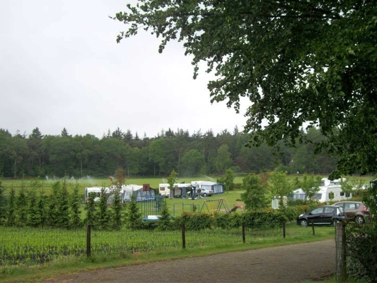 Kamperen bij de boer 4 - camping de prinsenhoeve