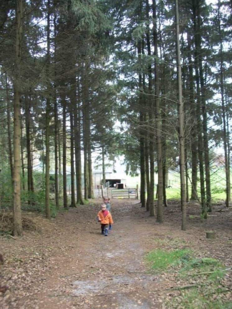 Kamperen bij de boer 7 - camping de prinsenhoeve