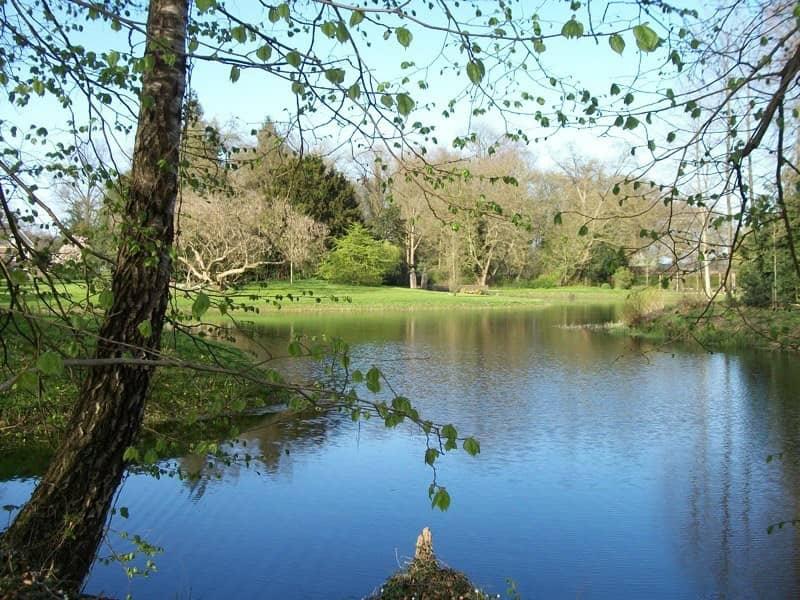 Omgeving-landgoed-de-Wildenborch - camping de prinsenhoeve