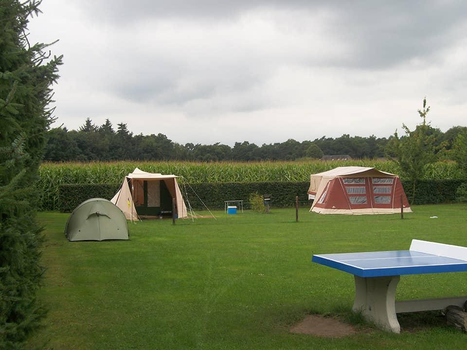 Kamperen bij de boer 76 - camping de prinsenhoeve