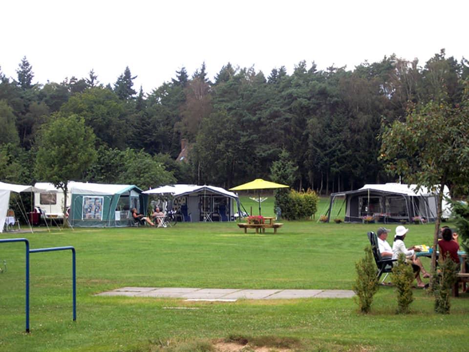 Aan de bosrand gelegen camping - camping de prinsenhoeve